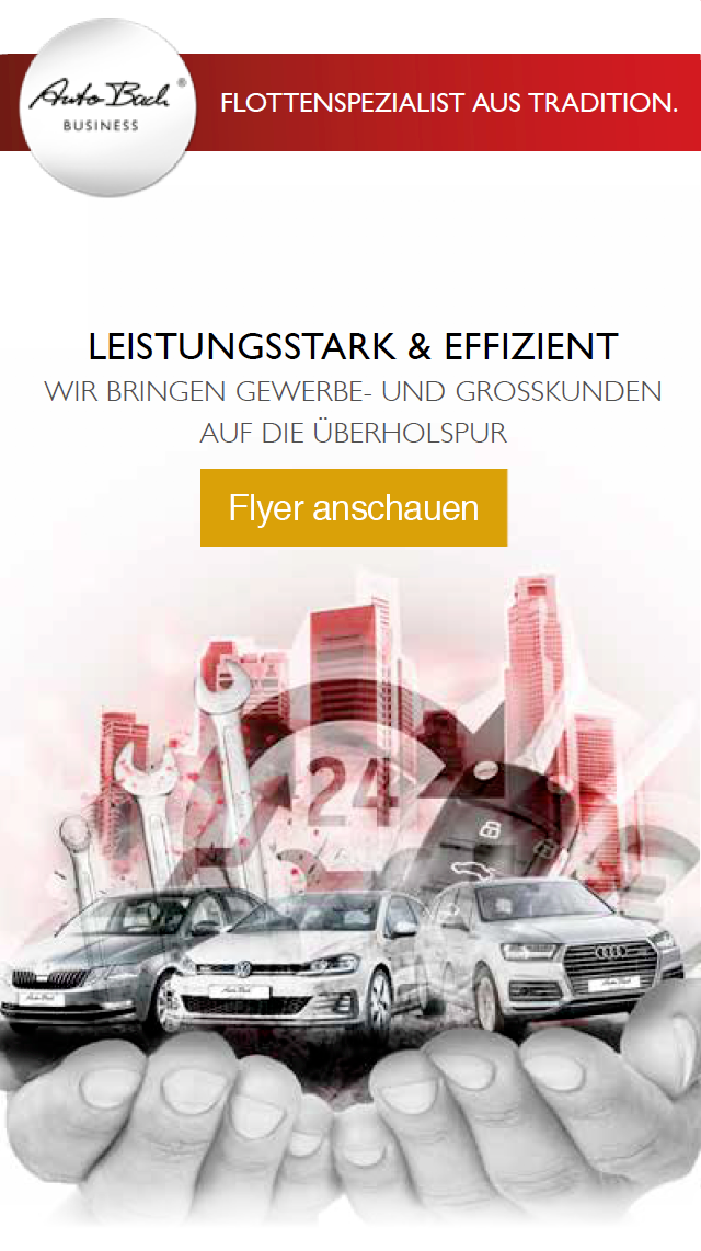 Autobach Business Flyer